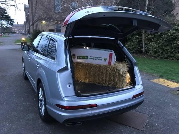 The Q7 has proved to be a capable family SUV