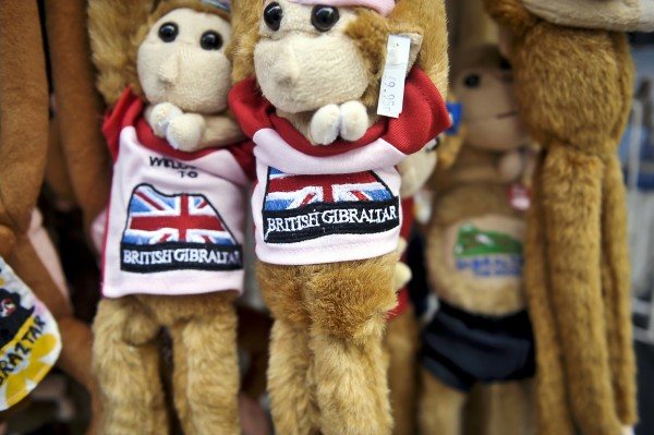 Gibraltar embroidered ape toy bears declaring 'British Gibraltar' hang in a gift shop, Main Street, Gibraltar.