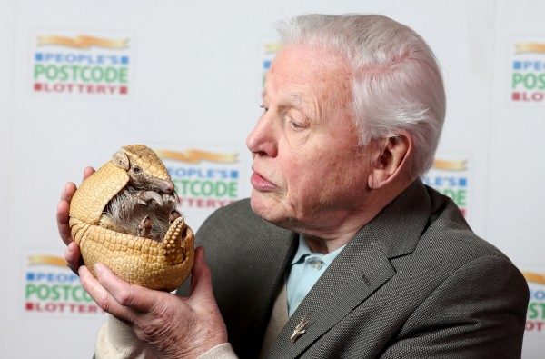 david attenborough tv guide 2017