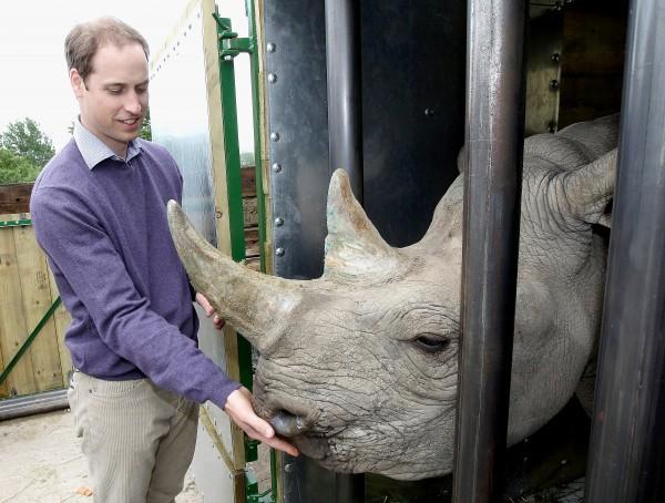 Prince William and rhino