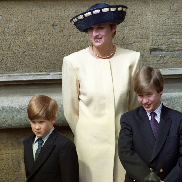 Prince William and Prince Harry with mother, Diana.