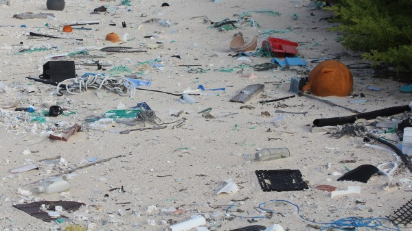 The beach with litter