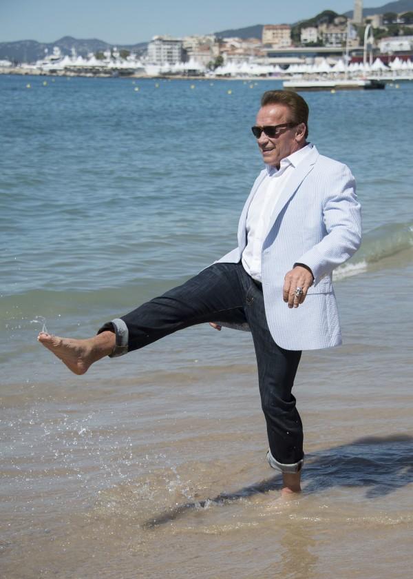 Arnold Schwarzenegger (Arthur Mola/AP)