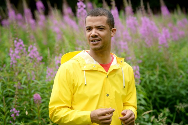 Musician and actor Raleigh Ritchie