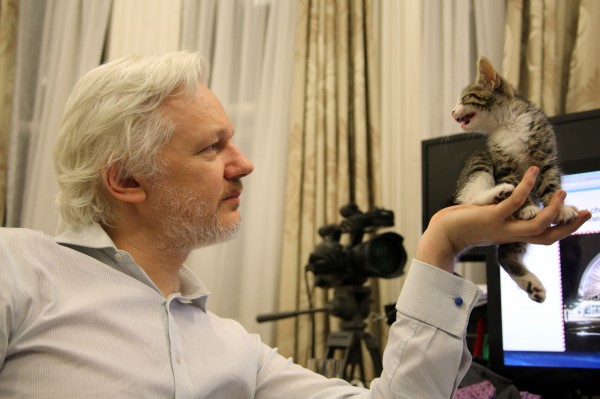assange and his kitten (Sunshine Press/PA)